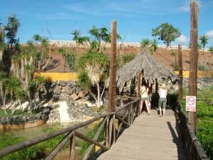 Monkey Zoo Park