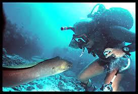 Scuba duiken Santa Eulalia