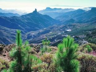 Gran Canaria vakantie