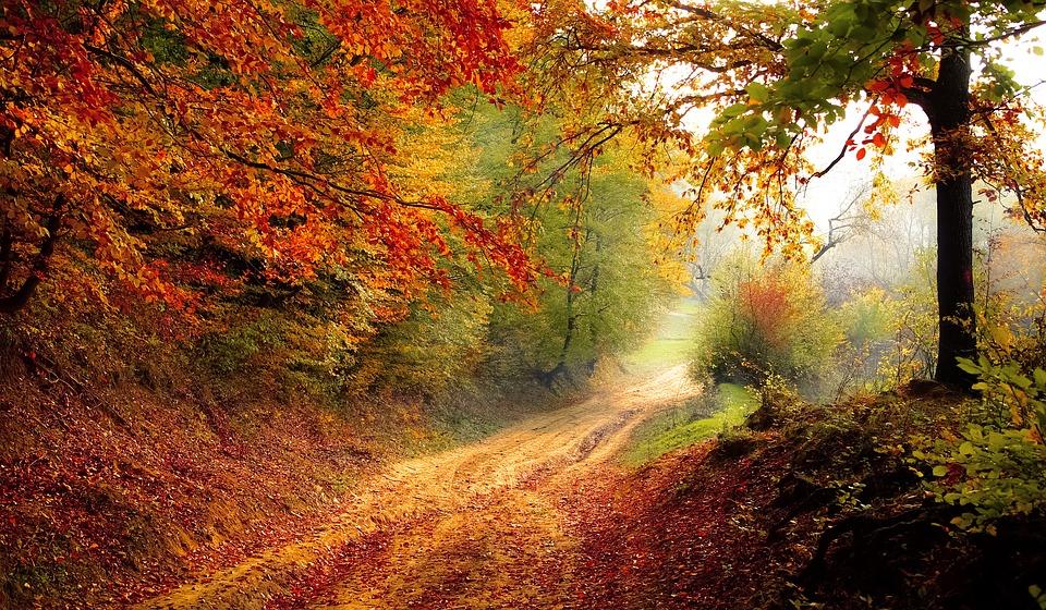 Herfstbezoek Spanje